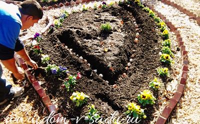 Вариант создания весенней клумбы с тюльпанами