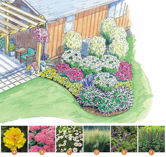 Названия цветов, посаженных на этой клумбе около частного дома: Тагетис. Седум. Ромашки. Просо прутьевидное. Будлея. Шалфей.
