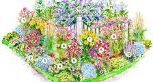план цветника с названиями растений