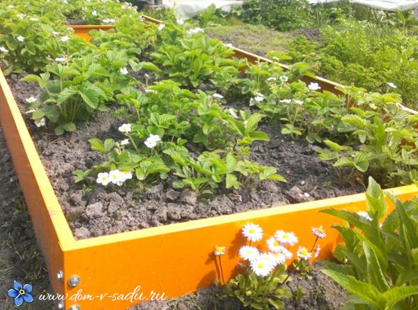 металлические грядки для огорода с полимерным покрытием