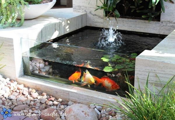 небольшой прудик с рыбками на даче
