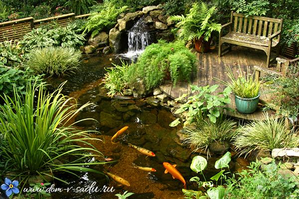 декоративный водоем на даче с рыбками