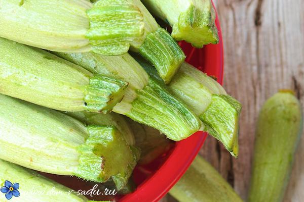 вкусные рецепты из кабачков