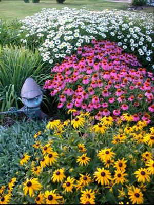 клумба с многолетними осенними цветами