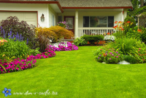 зеленая лужайка перед домом