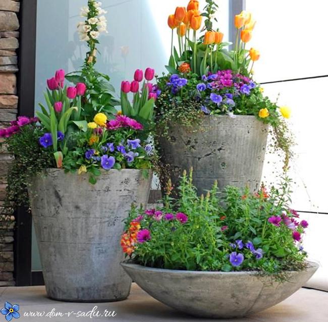 Как сделать клумбу из цветов дома
