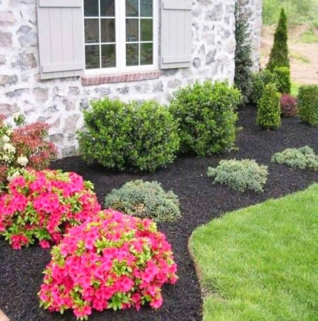 Дизайн клумб и цветников перед домом фото