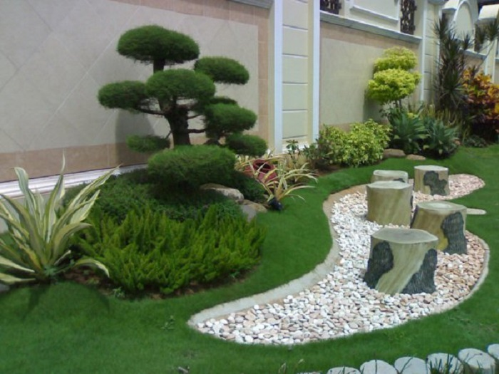 зеленые композиции на даче