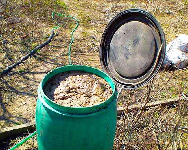 куриный помет органическое удобрение