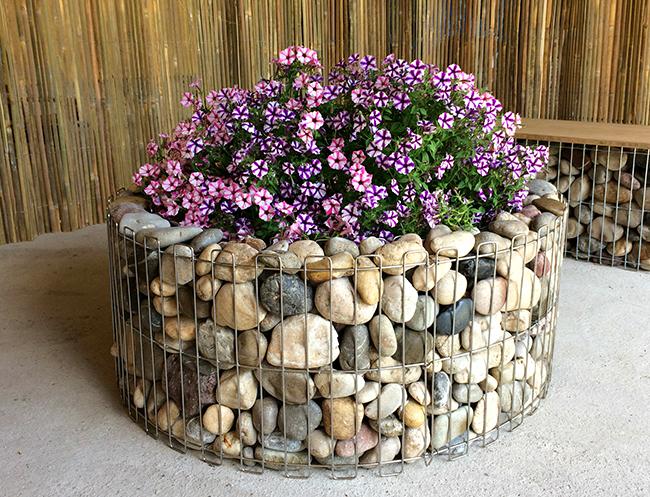 Клумба из сетки и камней — изюминка загородного участка
