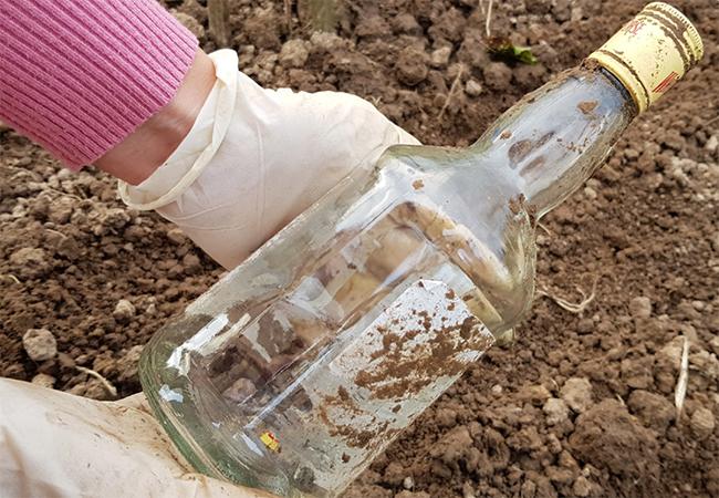 посадка опреснока бутылкой
