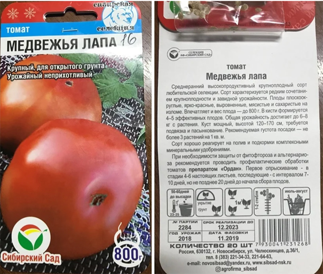 крупный сорт помидор